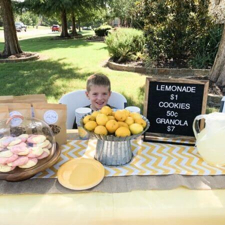 lemonade and cookies stand